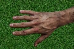 Farmer`s rough hand  on green grass fertile soil Royalty Free Stock Image
