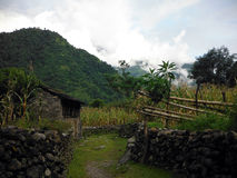 Farmer's Shed and Corn Fields in Himalayas. A farmer's shed and corn fields in the lower green Annapurna Himalayas of Nepal during monsoon Royalty Free Stock Images