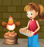 A farmer's wife collecting eggs Royalty Free Stock Images