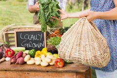 Farmer selling his organic produce. On a sunny day Stock Image