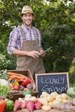 Farmer selling organic veg at market. On a sunny day Royalty Free Stock Image