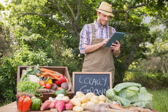 Farmer selling organic veg at market. On a sunny day Stock Photography
