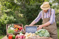 Farmer selling organic veg at market Stock Photography