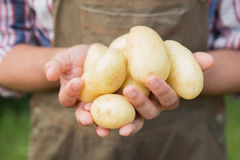 Farmer selling organic veg at market Royalty Free Stock Photo
