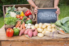 Farmer selling organic veg at market Stock Image