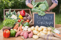 Farmer selling organic veg at market. On a sunny day Royalty Free Stock Photo