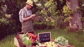 Farmer selling organic veg at market stock footage