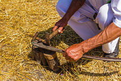 Farmer is sharpening, ironing, repair the blade on scythe. Stock Photography