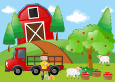 Farmer and sheeps in the farm. Illustration Royalty Free Stock Image