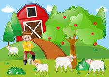 Farmer and sheeps in the field. Illustration Royalty Free Stock Image