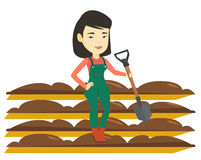 Farmer with shovel at field vector illustration. Asian farmer standing with shovel on the background of plowed field. Woman working in field with shovel. Woman Stock Image