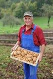 Happy farmer show his organic potato Stock Images