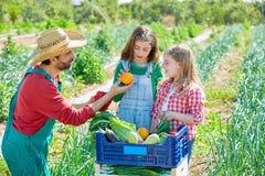 Farmer showing vegetables harvest to kid girls Stock Photos