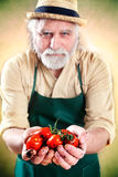 Farmer shows his biological vegetables Royalty Free Stock Photo