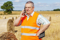 Farmer with smartphone near hay bales on field in summer Royalty Free Stock Images