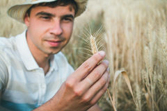 Farmer smiling when holding the ear of wheat in his hand Stock Images