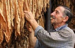 Farmer smokes a cigarette Stock Photo