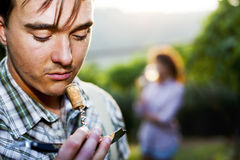 Farmer sniffing wine cork to test the quality of the wine. In a vineyard Royalty Free Stock Images