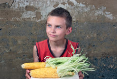 The farmer son. The boy in a red vest holds in hands a tray with corncobs Stock Images