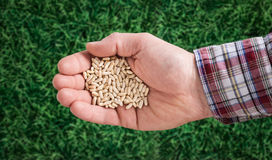 Farmer sowing seeds Stock Image
