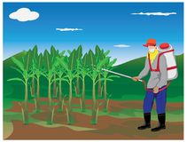 Farmer spray banana plant. Vector design Royalty Free Stock Photography