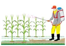 Farmer spray corn plant. Vector design Royalty Free Stock Image