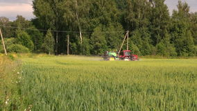 Farmer spray wheat field summer season, herbicides, pesticides stock video footage