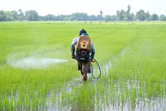 Farmer with sprayer Stock Photos