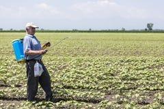 A Farmer spraying cotton field in Greece. Stock Image