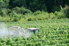 Farmer spraying grape vines. With tractor royalty free stock photography