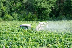 Farmer spraying grape vines. With tractor stock photography