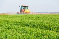 Farmer spraying green wheat field. Stock Photos