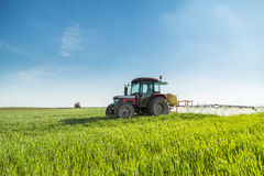 Farmer spraying green wheat field. Royalty Free Stock Photo