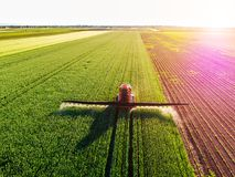 Farmer spraying green wheat field. Agricultural activity stock photography