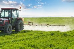 Farmer spraying green wheat field. Agricultural activity Royalty Free Stock Photo