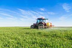 Farmer spraying green wheat field. Agricultural activity Stock Photos