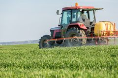 Farmer spraying green wheat field. Agricultutral activity Royalty Free Stock Image