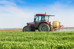 Farmer spraying green wheat field. Agricultural activity Royalty Free Stock Photography