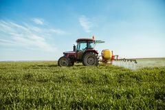Farmer spraying green wheat field. Agricultural activity Stock Images