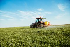 Farmer spraying green wheat field. Agricultural activity Stock Photo
