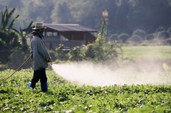 Farmer spraying pesticide on field Royalty Free Stock Images