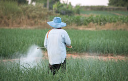 Farmer spraying pesticide Stock Images