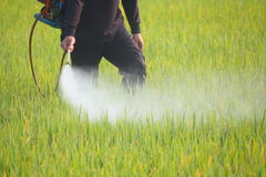 Farmer spraying pesticide Royalty Free Stock Image