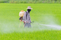 Farmer spraying pesticide Royalty Free Stock Photos