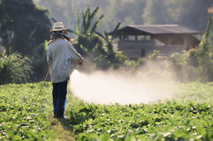 Farmer spraying pesticide on soy field Stock Photography