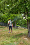 Farmer spraying the trees. With chemicals Royalty Free Stock Images