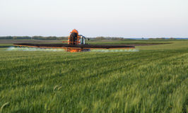 Farmer spraying wheat field at spring season Stock Photo