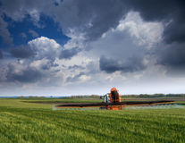 Farmer spraying wheat field at spring season. Herbicides, pesticides royalty free stock photo