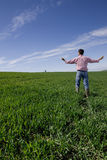 Farmer standing with arms outstretched in young wheat field Royalty Free Stock Images