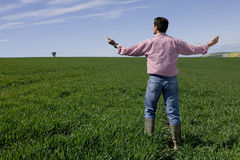 Farmer standing with arms outstretched in young wheat field Stock Images